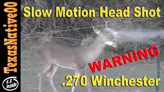 Slow Motion Head Shot Of A White Tail With A Savage 270 - WARNING - GRAPHIC