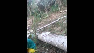 preview picture of video 'video lucu faisal.tepulu'