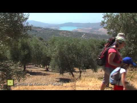 Der Große Wanderweg Málagas. Etappe 8: Canillas de Aceituno – Periana (Deutsch)
