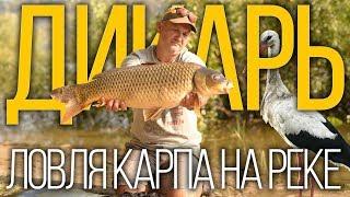 Все о рыбалка на черновицкой днестре
