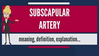 What is SUBSCAPULAR ARTERY? What does SUBSCAPULAR ARTERY mean? SUBSCAPULAR ARTERY meaning