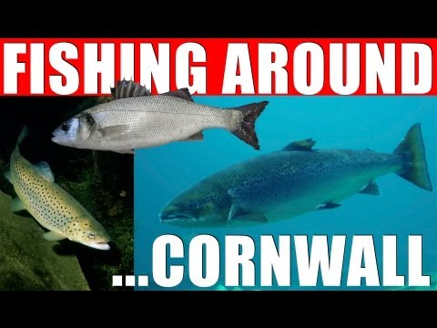 Fishing Around – Cornwall