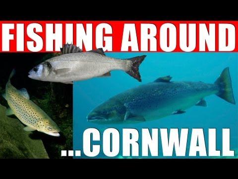 Fishing Around – Cornwall