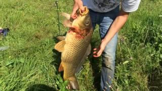 Платные водоемы для рыбалки в казани