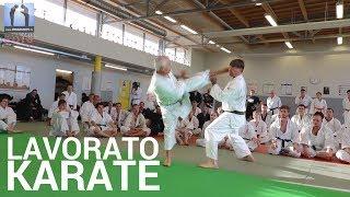 Karate - Jean-Pierre Lavorato [masterclass 2016]
