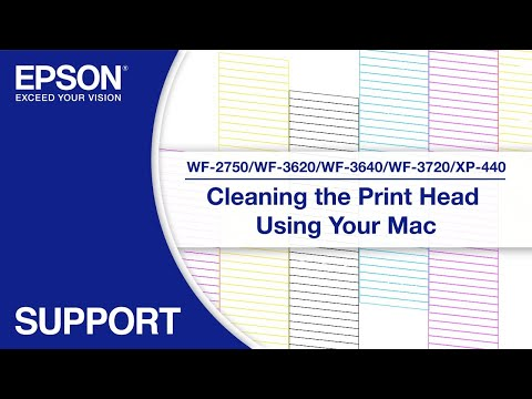 Cleaning the Print Head via Mac