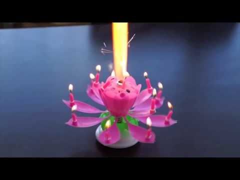 Vela para cumpleaños musical animada en flor de loto.