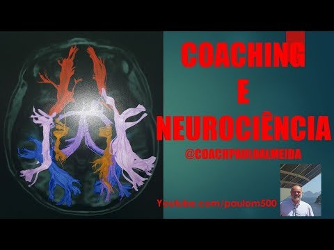 Técnicas de Coachiing & Neurociencia - Prof.Paulo Antonio Almeida