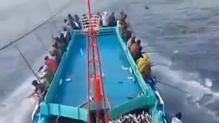 The Most Advance  Net Fishing On Deep Sea