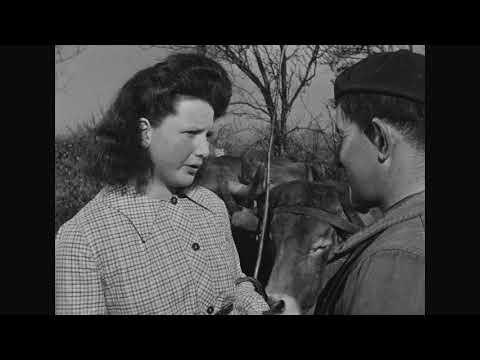 Farrebique (1946) – Georges Rouquier [Extrait]