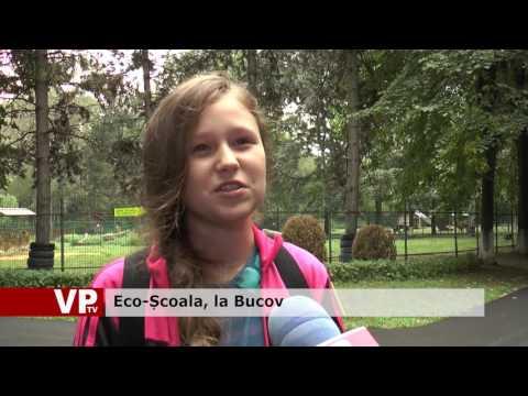 Eco-Școala, la Bucov