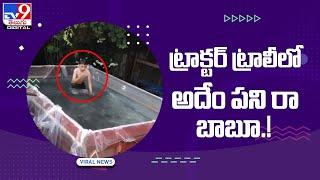 Viral Video : ట్రాక్టర్ ట్రాలీలో అదేం పని రా బాబూ !