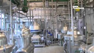dTodo - Productores de leche