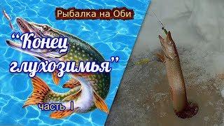 Рыбалка на Оби | Конец глухозимья. Выезд на рыбалку  часть #1