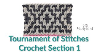 Tournament Of Stitches Crochet Section 1  ||  Right Handed
