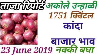 कांदा बाजार भाव/प्याज मार्केट रिपोर्ट/onion market report