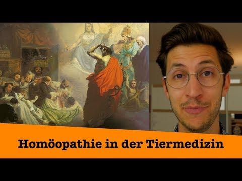 Homöopathie für Tiere - Zwei Dinge muss JEDER wissen