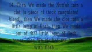 Mishary Afasy-Surah Al Muminoon (SUBHANALLAH!)