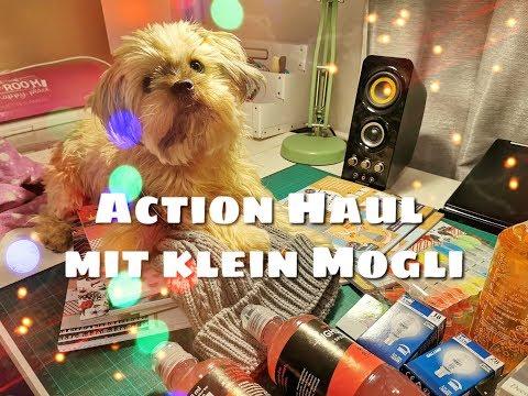 Action HAUL, 12.11.19 mit MOGLI als Helfer ! { Blöcke, Dieses & Jenes }