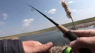 Рыбалка на цне в тамбовской области серп