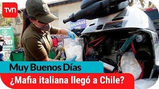 4 mil millones en drogas... ¿Mafia italiana llegó a Chile? | Muy buenos días