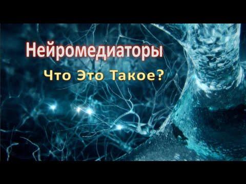 Нейромедиаторы, что это такое? видео