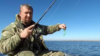 Ставропольский край рыбалка на курганинском водохранилище