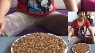 Chinese Woman Eats Live Maggots | Eating Challenge @Hodgetwins