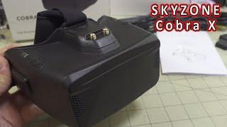 Skyzone Cobra X FPV Box Goggle Review ????