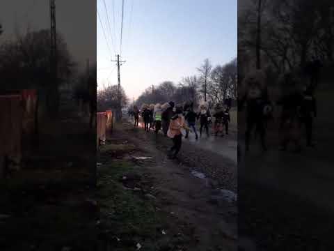 Femei divortate din Reșița care cauta barbati din Drobeta Turnu Severin