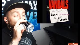 The Vandals - Happy Birthday to Me - REACTION!