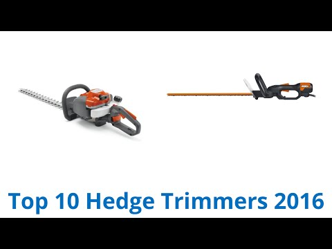 10 Best Hedge Trimmers 2016