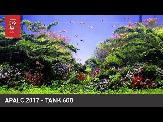 AQUASCAPE CONTEST - APALC 2017 TANK 600