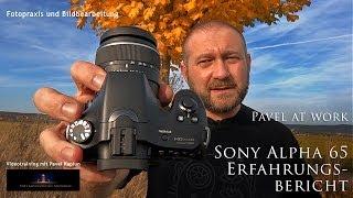 Sony Alpha 65 Erfahrungsbericht