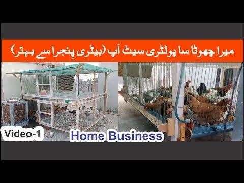 How to start desi Hen Farming at home - игровое видео смотреть