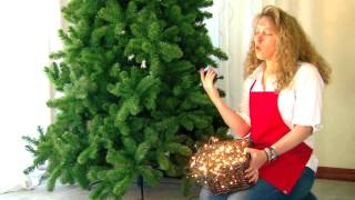 How To Light Your Christmas Tree