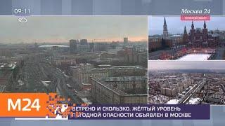 Суббота в Москве стала самым теплым днем зимы за 70 лет - Москва 24