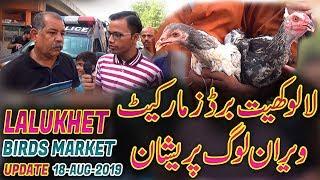 Lalukhet Sunday Birds Market Latest Updates 18-8-2019 Jamshed Asmi Informative Channel