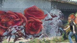 graffiti ggcrew meets new zealand