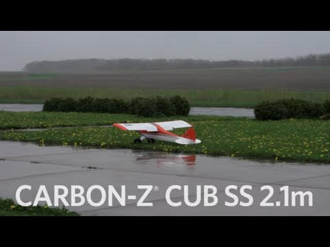 quick-look-eflite®-carbonz®-cub-ss-21m