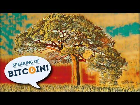 Maržos prekybos bitcoin bitfinex