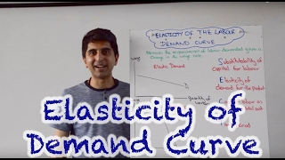 Elasticity of Labour Demand