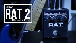 Get Legendary Distorted Tones w/ This Pedal! | ProCo Rat 2 Demo