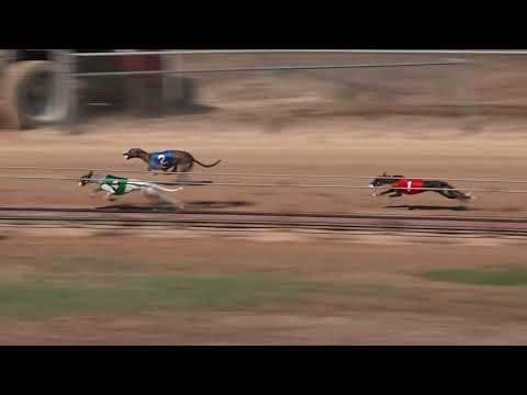 Race 35