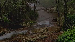 Relaxing River Sounds for 8 Hours, Sound of River for White Noise to Sleep, Study, Relieve Stress