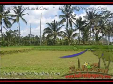 600 m2 Lahan  View sungai dan sawah di Ubud TJUB427