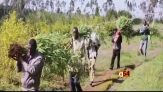 Khalid Duri of African Bamboo Featured on TV2 Africa