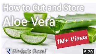 How to Cut and Store Aloe Vera | RinkusRasoi