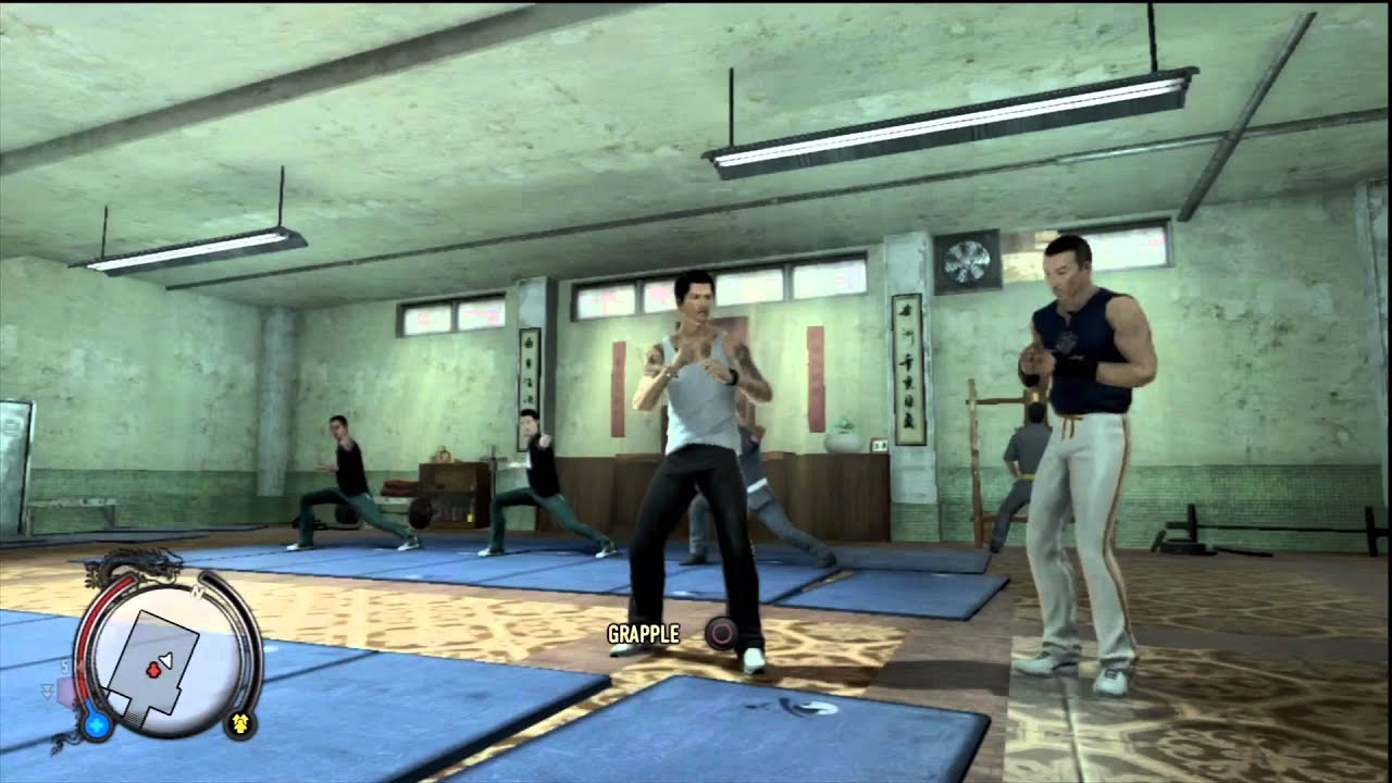Listen To Sleeping Dogs' Kung Fu Master Rattle Off Hilarious Insults While You Train