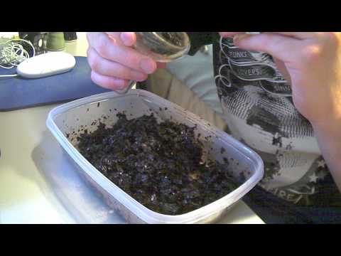 How To Pack and Heat Manage Tangiers in a Crown Micro Funnel